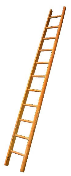 pole-ladder.jpg